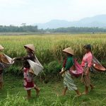 9 Perempuan Pejuang Pangan Versi Oxfam Indonesia